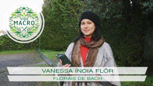 Vanessa Índia Flôr // Florais de Bach